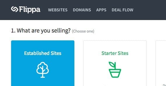 Selling a Site on Flippa