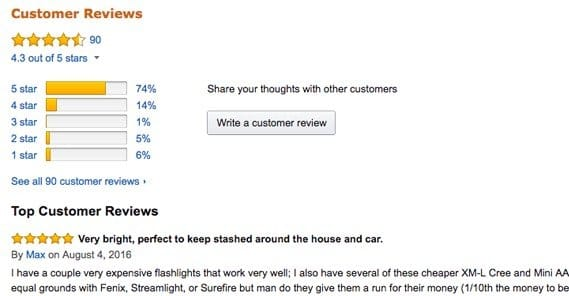 Example Reviews on Amazon