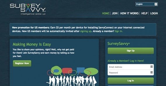 Can You Earn a Living By Promoting Paid Surveys Online?