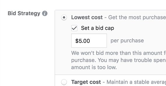 Why Does My Cost Per Conversion Fluctuate Daily?