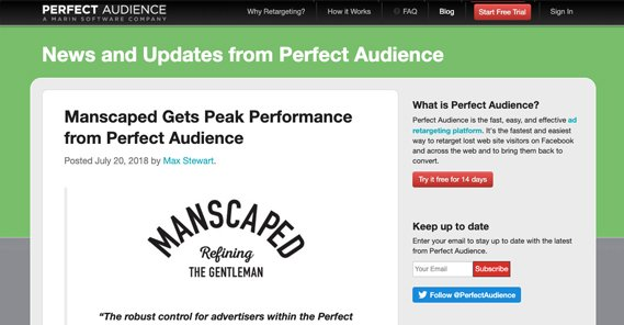 Perfect Audience Case Study
