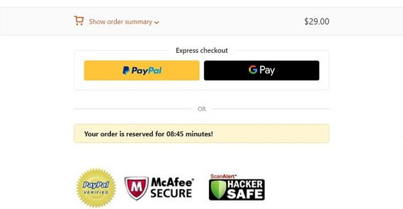 Trustworthy Checkout and Seals